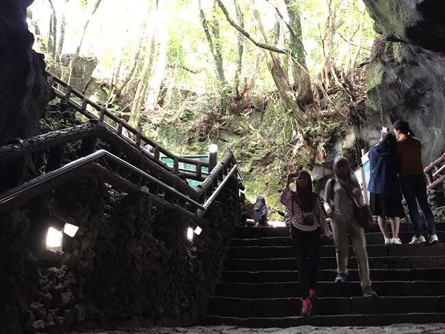 マンジャングル(万丈窟 / 만장굴)入口階段