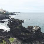 龍頭岩(ヨンドゥアム)で食べる絶品アワビの刺身 – チェジュ島観光のおすすめグルメ