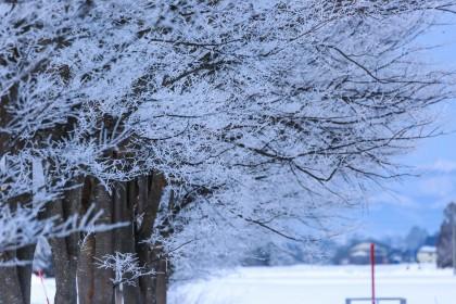 「冬(ふゆ)」を韓国語では?季節を表す様々な単語