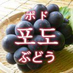「ぶどう」を韓国語では?果物のブドウが好きです