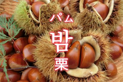 「栗(くり)」を韓国語では?果物のクリが好きです