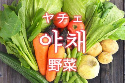 「野菜(やさい)」を韓国語では?よく使う野菜の単語一覧