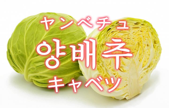 「キャベツ」を韓国語では?野菜のきゃべつが好きです