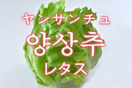 「レタス」を韓国語では?野菜のレタスが好きです