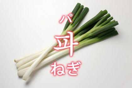 「ねぎ」を韓国語では?野菜のネギが好きです