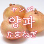 「タマネギ」を韓国語では?野菜の玉葱(たまねぎ)が好きです