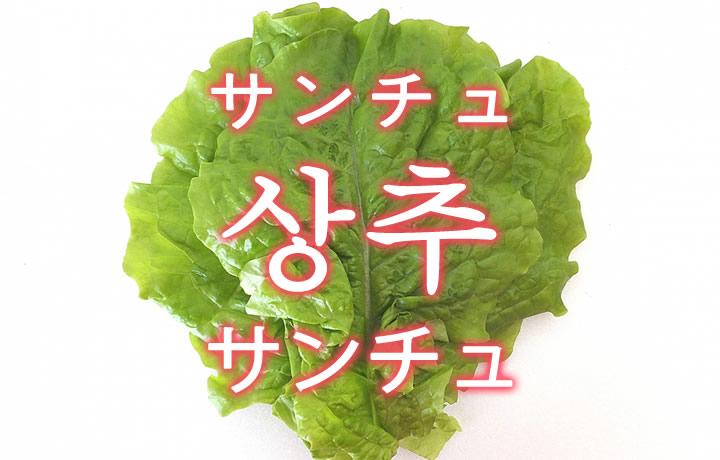「サンチュ」を韓国語では?野菜のサンチュが好きです