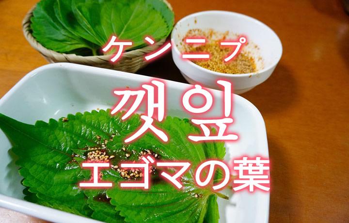 「エゴマの葉」を韓国語では?野菜のえごまの葉が好きです