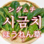 「ほうれん草」を韓国語では?野菜のホウレンソウが好きです