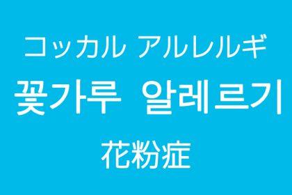 「花粉症(かふんしょう)」を韓国語では?花粉の季節はつらいです