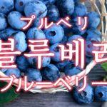 「ブルーベリー」を韓国語では?「블루베리(プルベリ)」の意味