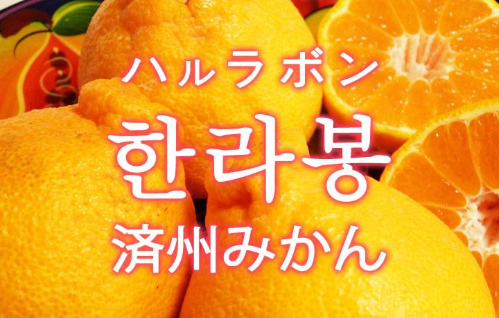 「ハルラボン(済州みかん)」を韓国語では?「한라봉(ハルラボン)」の意味