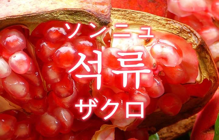 「ザクロ」を韓国語では?「석류(ソンニュ)」の意味
