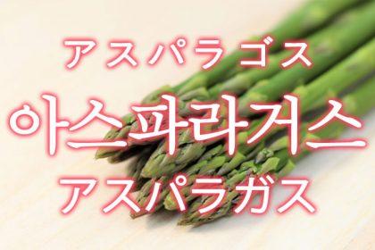 「アスパラガス」を韓国語では?「아스파라거스(アスパラゴス)」の意味