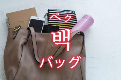 「バッグ」を韓国語では?「백(ペク)」の意味