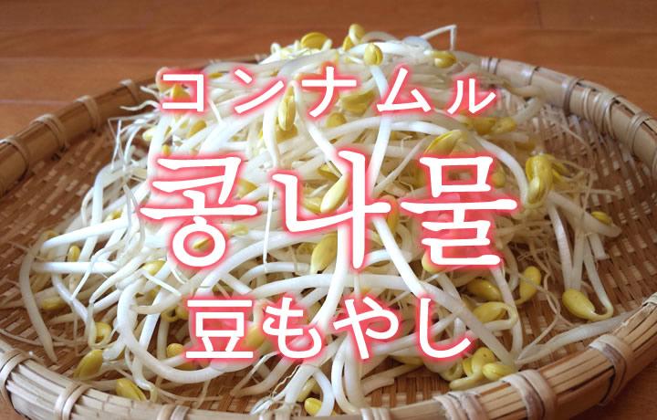 「豆もやし」を韓国語では?「콩나물(コンナムル)」の意味
