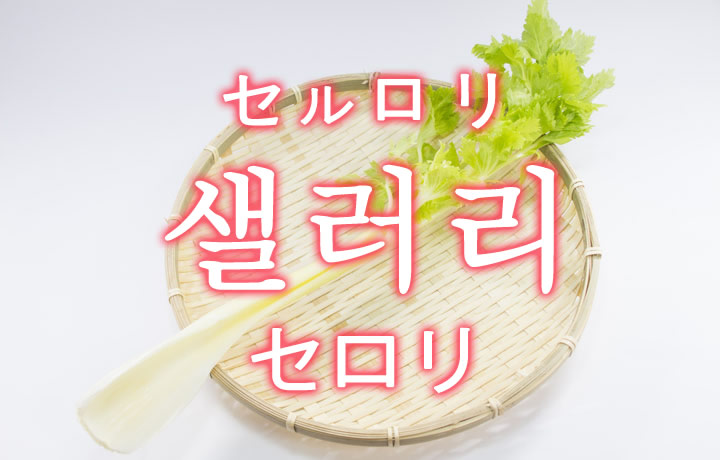 「セロリ」を韓国語では?「샐러리(セルロリ)」の意味