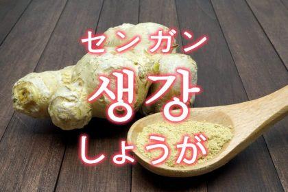 「しょうが(生姜)」を韓国語では?「생강(センガン)」の意味