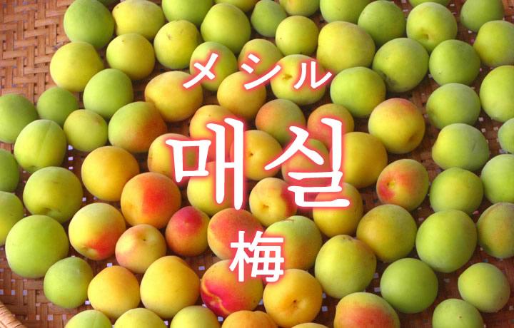 「梅(うめ)」を韓国語では?「매실(メシル)」の意味