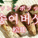 「松茸(まつたけ)」を韓国語では?「송이버섯(ソンイボソッ)」の意味