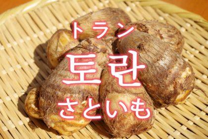 「さといも(里芋・サトイモ)」を韓国語では?「토란(トラン)」の意味
