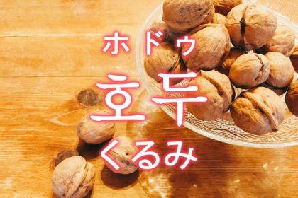 「くるみ」を韓国語では?「호두(ホドゥ)」の意味