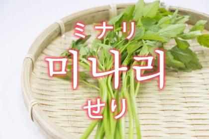 「せり(芹・セリ)」を韓国語では?「미나리(ミナリ)」の意味