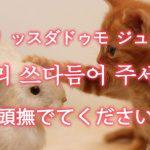 「頭撫でてください」を韓国語では?「머리 쓰다듬어 주세요(モリ ッスダドゥモ ジュセヨ)」の意味
