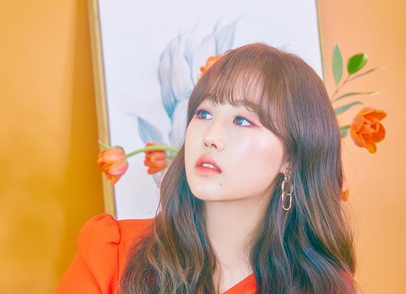 ベイビソウル(Baby Soul)を韓国語では?