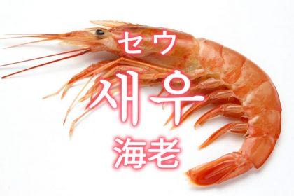 「海老(えび)」を韓国語では?「새우(セウ)」の意味