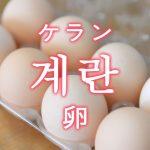 「卵(たまご)・鶏の卵」を韓国語では?「계란(ケラン)」の意味