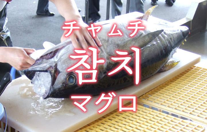 「マグロ(鮪)」を韓国語では?「참치(チャムチ)」の意味