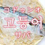 「サバ(鯖)」を韓国語では?「고등어(コドゥンオ)」の意味