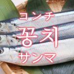「サンマ(秋刀魚)」を韓国語では?「꽁치(コンチ)」の意味