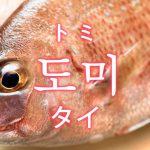 「タイ(鯛)」を韓国語では?「도미(トミ)」の意味