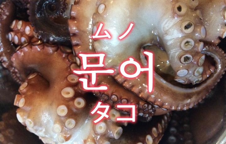 「タコ(蛸)」を韓国語では?「문어(ムノ)」の意味
